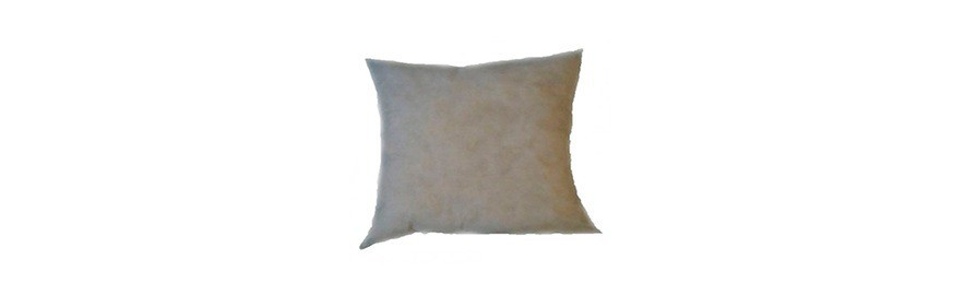 Throw pillows inserts